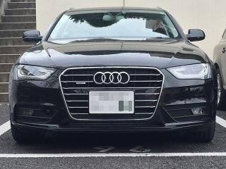 dynamicline_front_grille.jpg